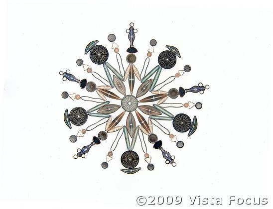 Diatom Exhibit (inverted image)